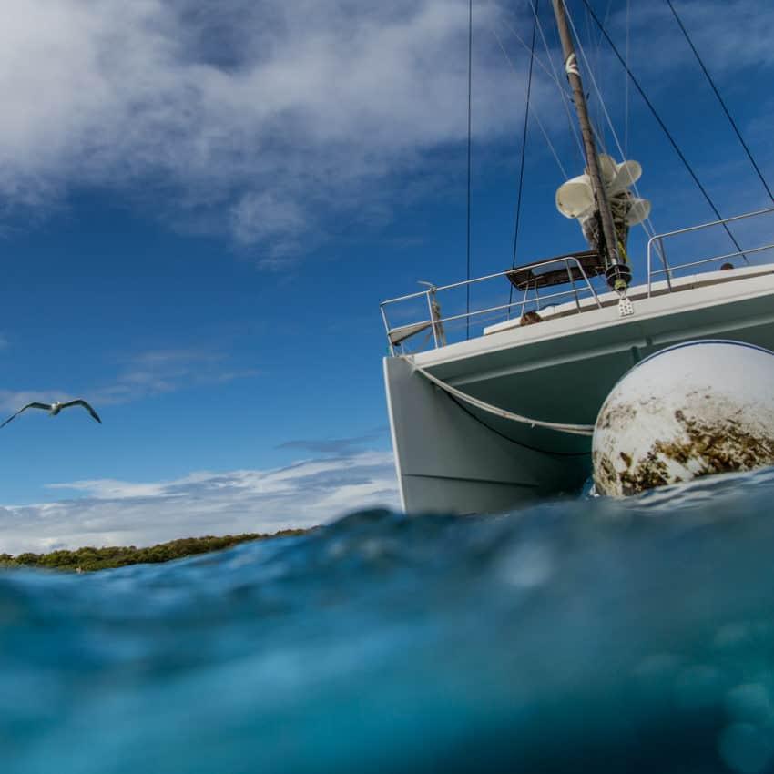 Segeln in Guadeloupe: Blick von unterwasser auf Katamaran der an Moring liegt